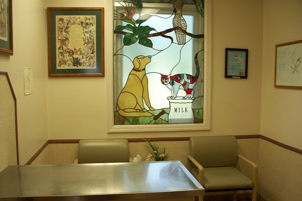 Consultation Exam Room