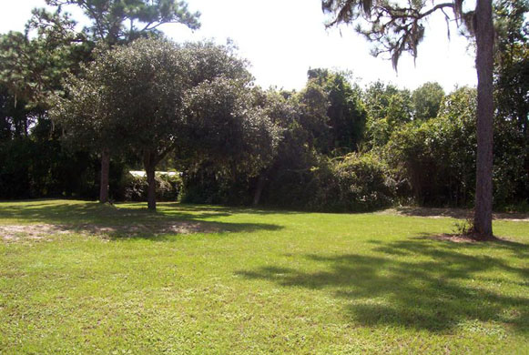 Our hospitalized patients and boarders can enjoy the spacious, sun-dappled grounds, with plenty of shade and room to roam!
