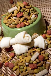 NutritionalCounselingPuppiesKittens